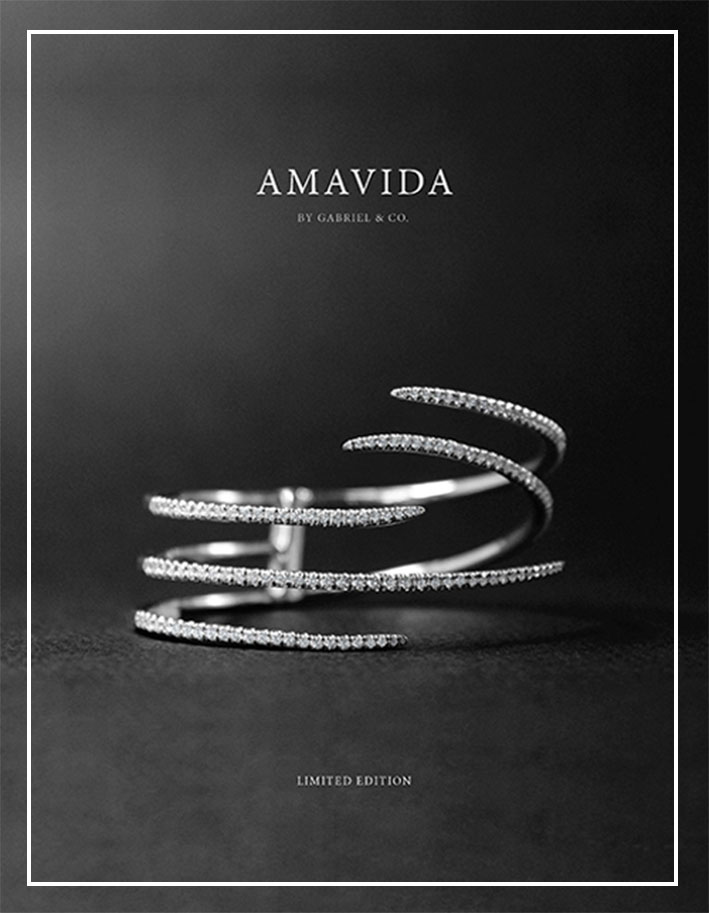 2016 Amavida Limited Edition Fashion Book